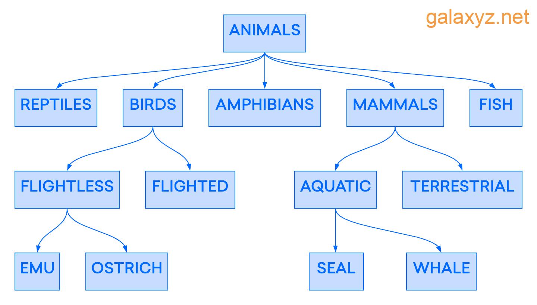 Ví dụ về  Database  phân cấp: Phân loại động vật